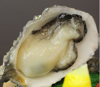 牡蠣 (3).JPG